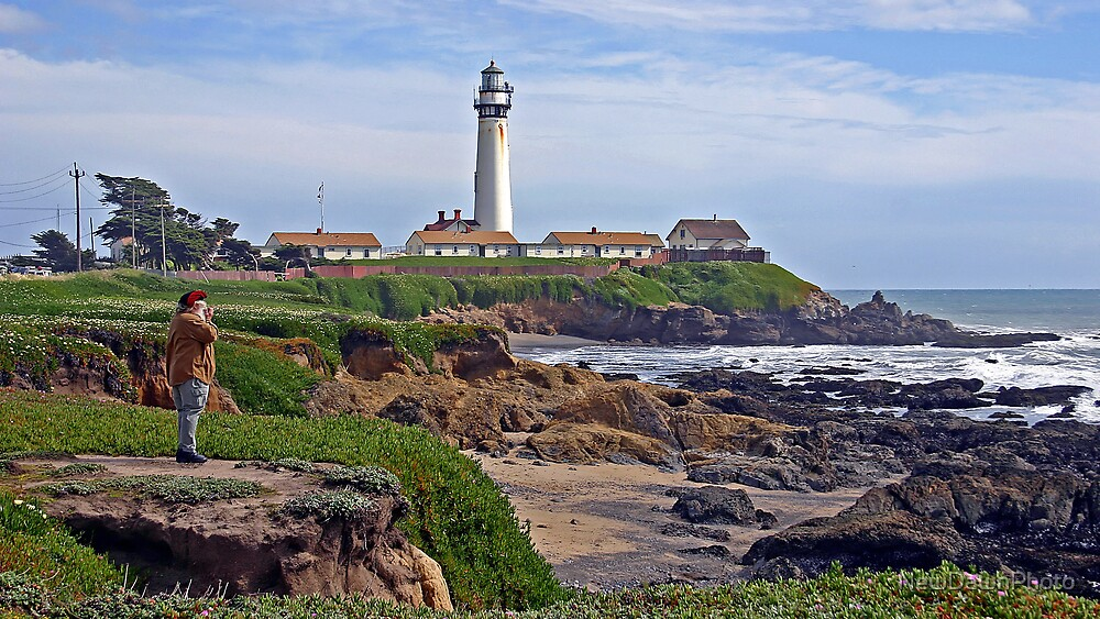 Pigeon Point Lighthouse by NewDawnPhoto