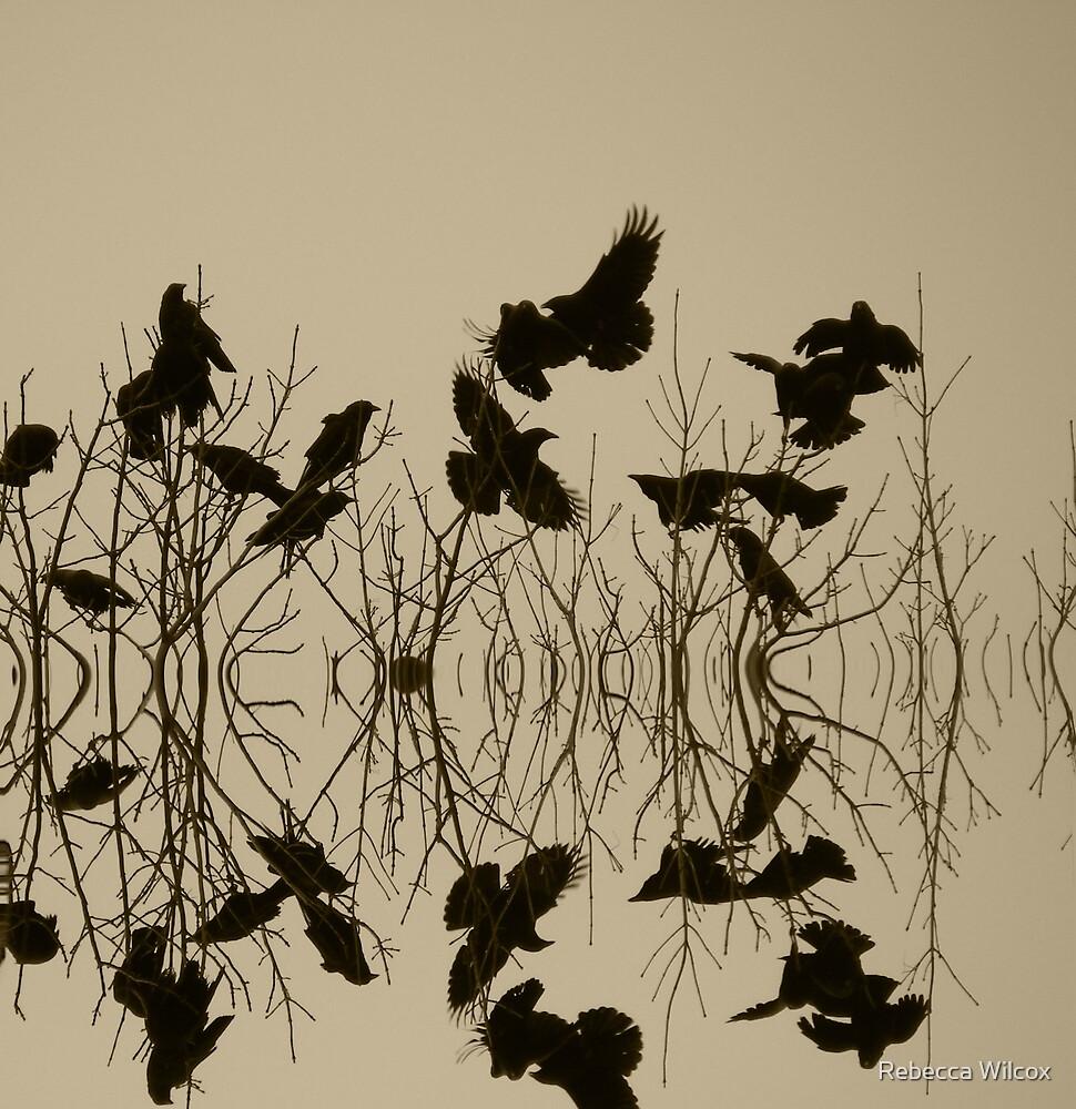 Holy Crow by Rebecca Brann
