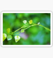 Cute Little Leaves on Intertwining vines  Sticker
