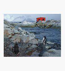 Port Circumcision, Antarctica Photographic Print