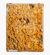 The gold, dainty necklace of light iPad Case/Skin
