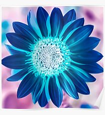The Bright Eyed Sunflower with a Twist Poster