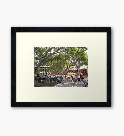 Rottnest Island Village 4 Framed Print
