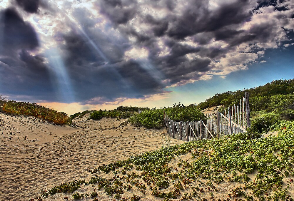 On The Way To The Beach by Philip James Filia