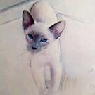 My Precious Cat. by Siamesecat