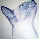 Samantha in profile by Siamesecat