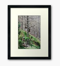 Nature's Easel Framed Print