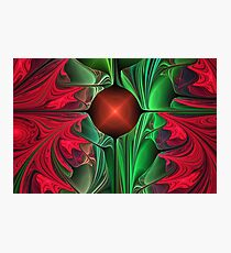 Red Pointsettias Photographic Print