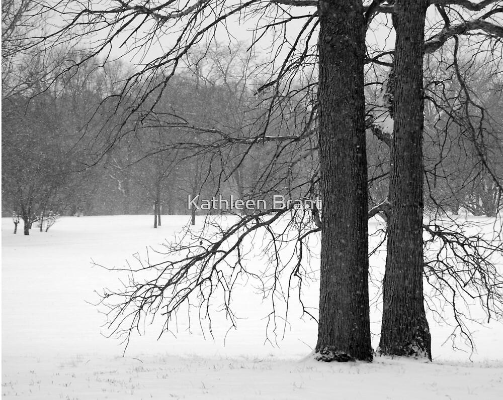 Winter Trees by Kathleen Brant