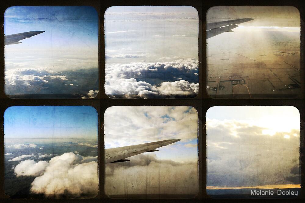 Airborne by Melanie  Dooley
