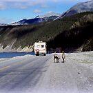 Alaska Canadian Highway by Charmiene Maxwell-Batten