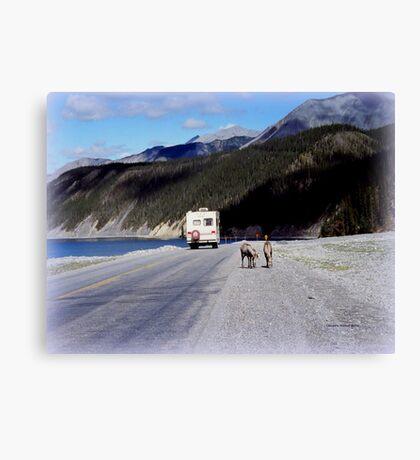 Alaska Canadian Highway Canvas Print