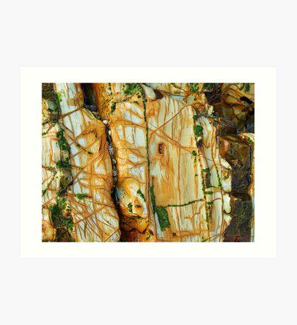 Beach Rock...... Art Print