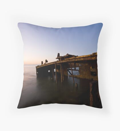 Flooded Throw Pillow