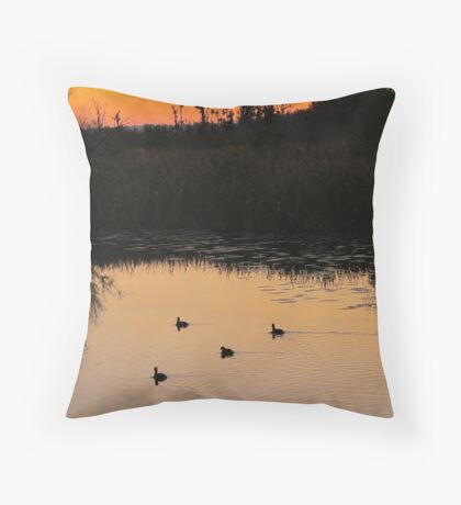 Coots on Econfina Throw Pillow
