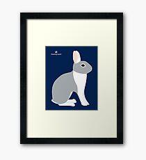 Lilac White Eared Rabbit Framed Print