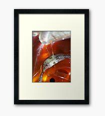 Drops of Maple Framed Print