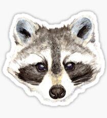 Raccoon Face  Sticker
