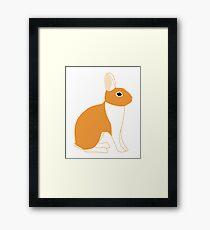 Orange White Eared Rabbit Framed Print