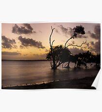 Sunset Skies Poster