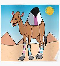 Complete Drome-demi Camel Poster