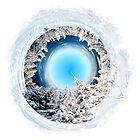 Winter World 2 by Richard Maier