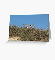 The nest is here I think! Greeting Card