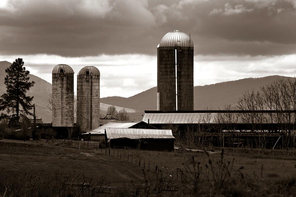 Farm Silos by Rod  Adams