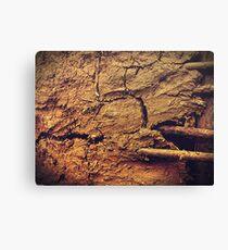 Mud wall Canvas Print