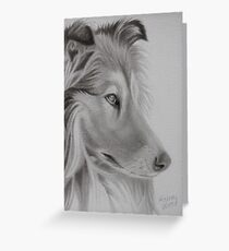 Rough Collie Greeting Card