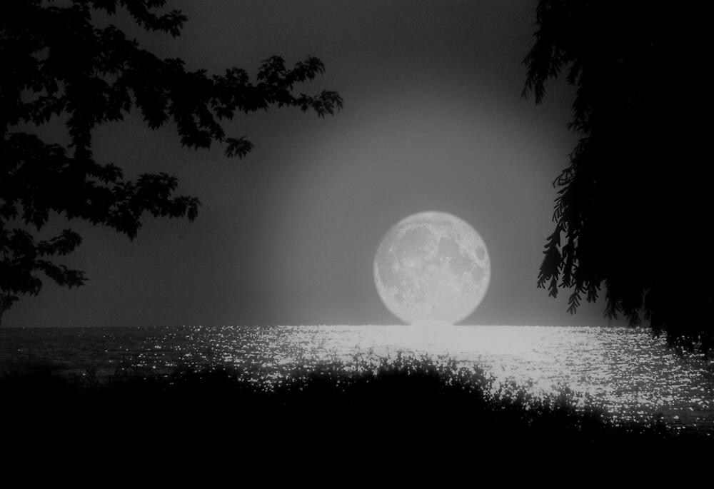 Moonset on Lake Erie by Kenneth Krolikowski