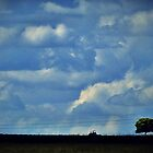 Waiting for rain by iamelmana