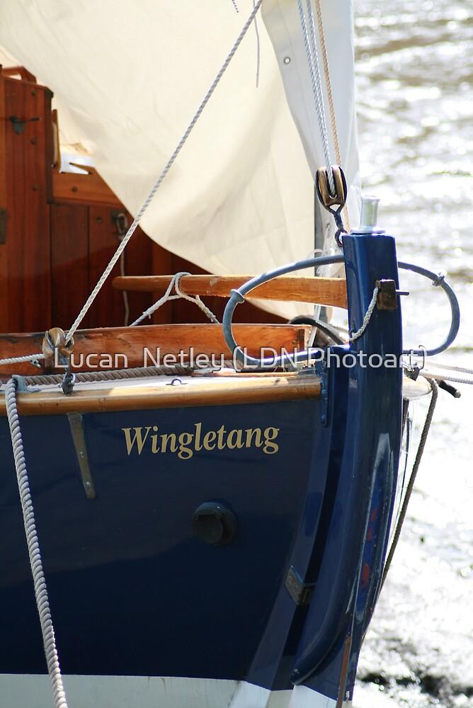 wingletang by Lucan  Netley (LDN Photoart)