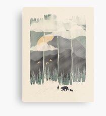 Spring Mountain Weather Metal Print