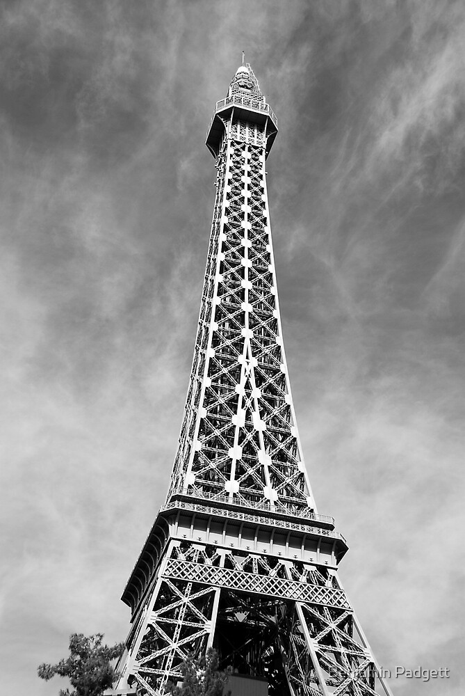 No. 13, La Tour Eiffel de Vegas by Benjamin Padgett
