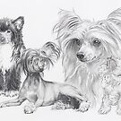 Growing Up Chinese Crested by BarbBarcikKeith