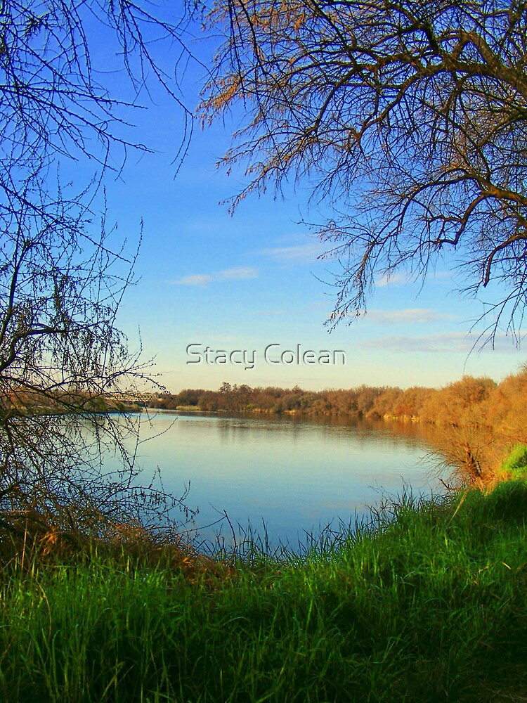 Nice day!! by Stacy Colean