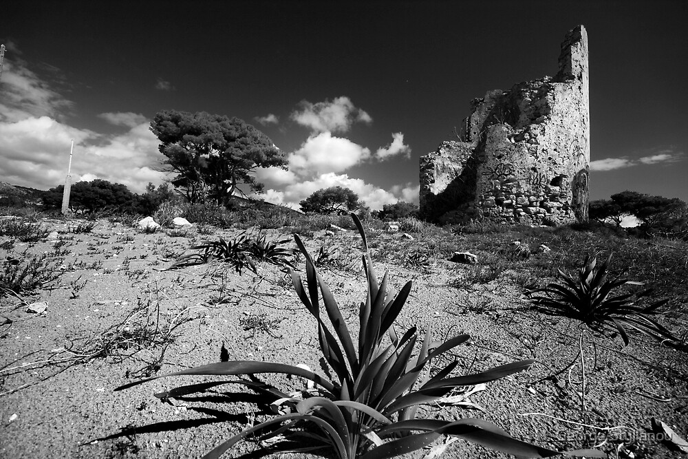 A plant, a tree and a watchtower by George Stylianou