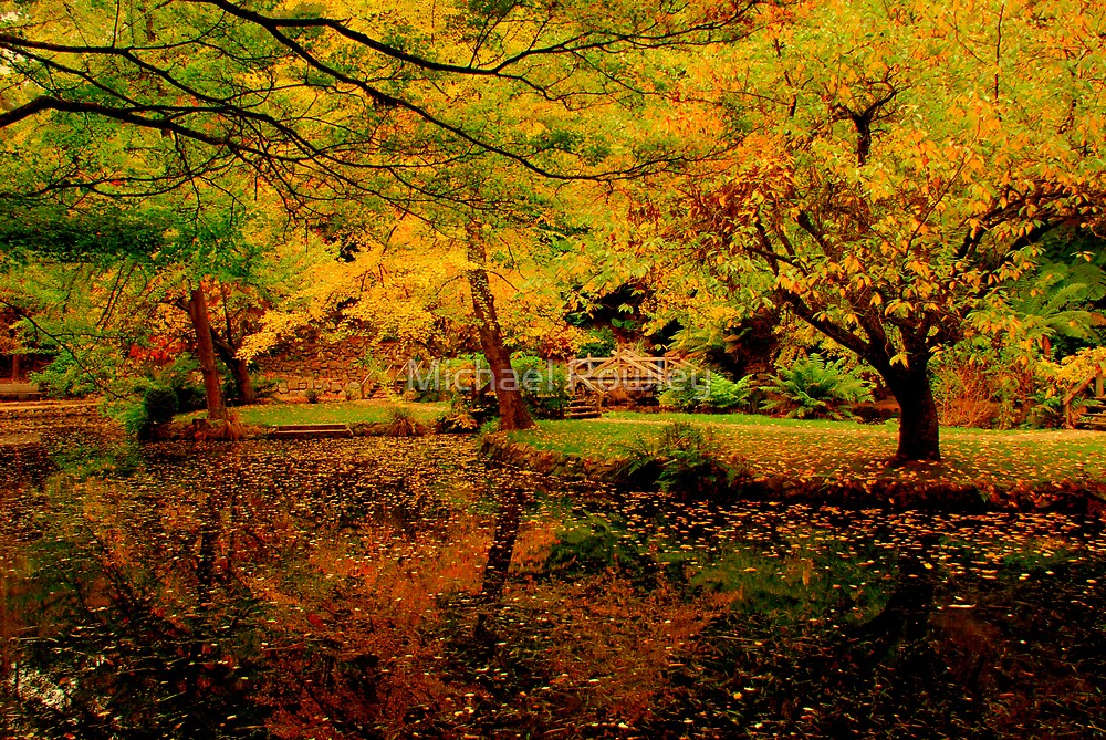 Autumn Colours by Michael Rowley