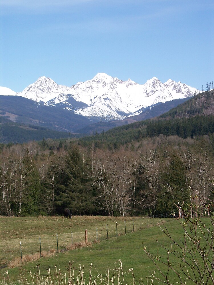 Mountain View by Valerie