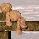 "Lost Teddy (""All alone am I"" revisited) by jesika"