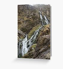 Moss Force Greeting Card