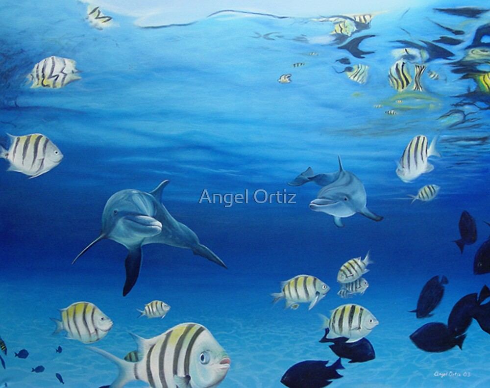 dolphins by Angel Ortiz