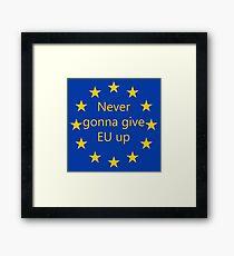 Never gonna give EU up Framed Print