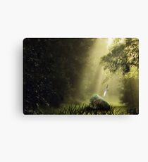 The Sword in the Stone Canvas Print