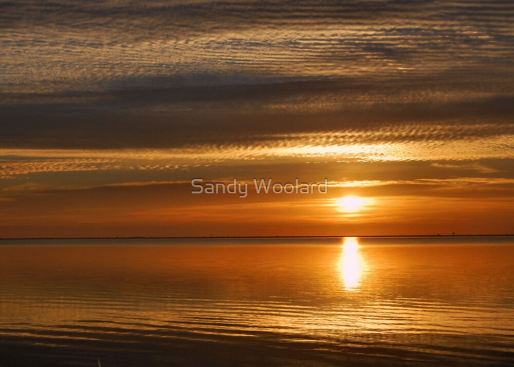 Golden Morning by Sandy Woolard
