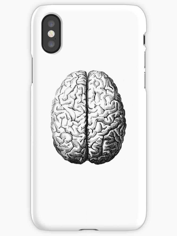 Anatomically Correct Brain\