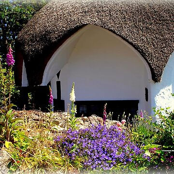 Lovely Cottage in Lyme Regis by Sita