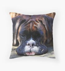Such is Life -Boxer Dogs Series- Throw Pillow