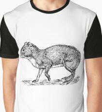 Agouti Graphic T-Shirt